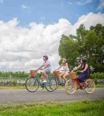 Bike hopping Martinborough wineries