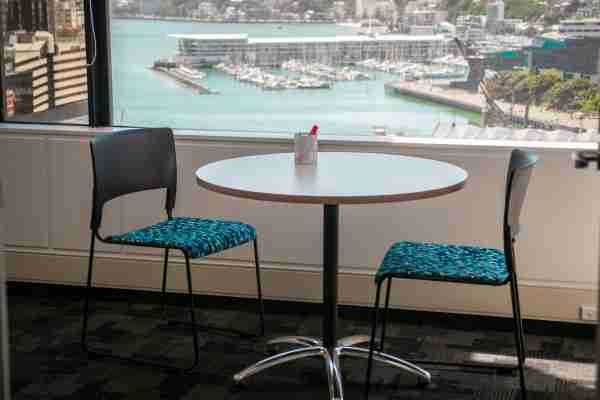 Business corporate Volpara Office space blue wellington view harbour window10
