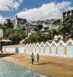 background oriental bay 2