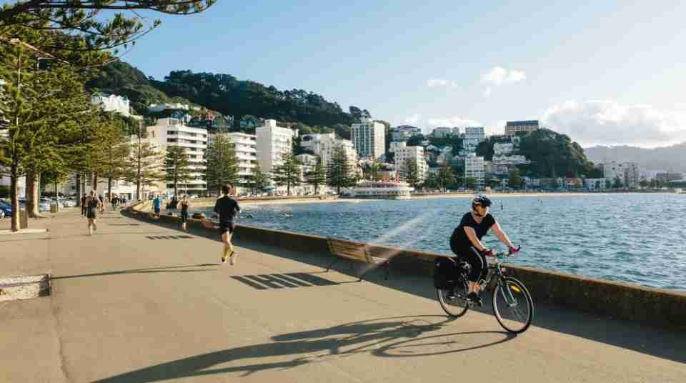 Oriental Bay runners safe